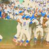 2017年 第99回全国高校野球選手権大会 準決勝と決勝の結果まとめました。花咲徳栄高校、優勝おめでとうございます!!(別サイトへ引越しました)