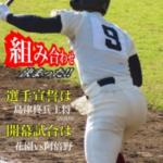 2019年 第101回全国高校野球選手権大阪大会を予想してみました